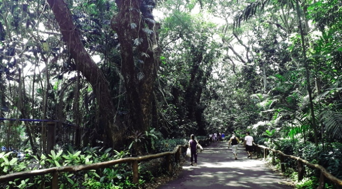La Mesa Eco-Park: A Forest In The City